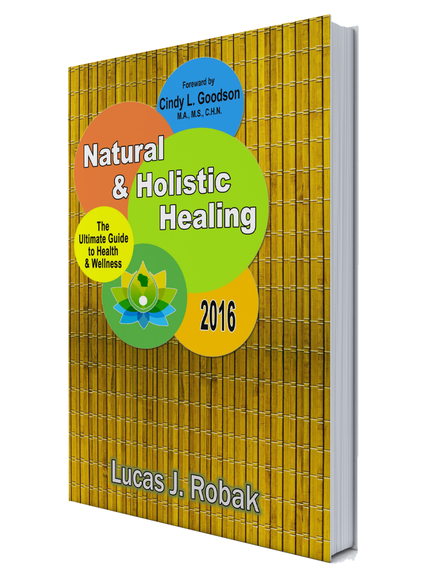 book-natural-holistic-healing-book-cover